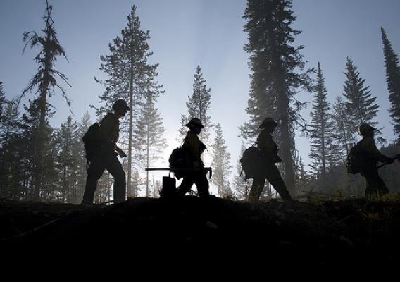 Spiraling firefighting costs have shrunk the budget for critical forest and rangeland priorities, including investing in Forest Service programs designed to mitigate the impacts of wildfire.