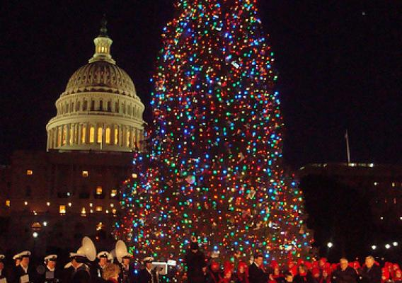 california tree to shine christmas cheer on the capitol usda - Christmas In The United States