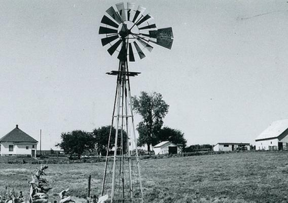 Farm in Taylor County, IA, July 28, 1958.