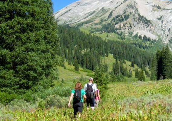 Visitors Hiking on Bridger-Teton National Forest in Wyoming