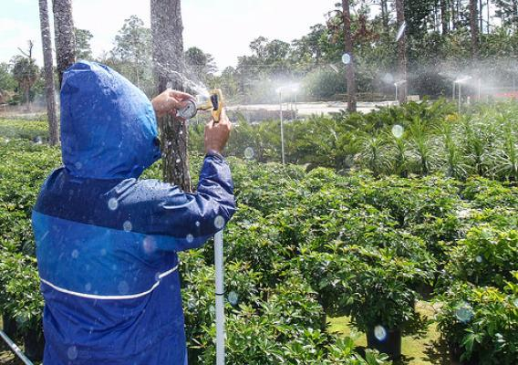 A person testing an irrigation system