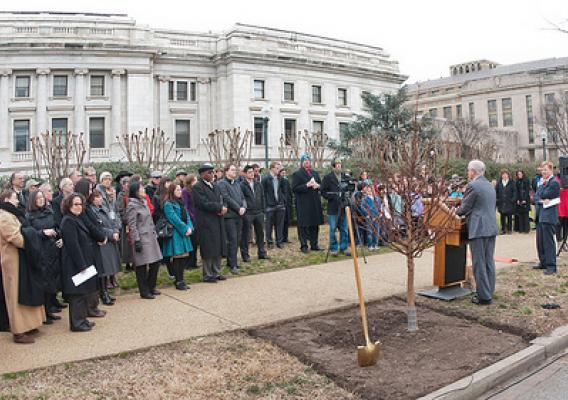 "United States Department of Agriculture (USDA) Under Secretary Natural Resources and Environment Harris Sherman (left), next to the freshly planted Dawn Redwood for the Celebration of Tu B'Shevat ""The New Year of the Trees"" event; the 3rd Grade Class of the Jewish Primary Day School of the Nation's Capitol and other addressed the attendees at the District of Columbia western lawn next to the USDA Headquarters, Whitten Building at 14th Street and Independence Ave SW, Washington, D.C. on Wednesday, February 8"