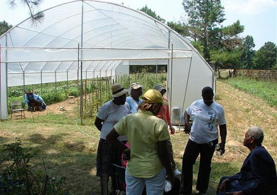 McGee shows members of the Women in Agriculture organization her seasonal tunnel house crops as well as other vegetables and herbs.  The women were so impressed they said they wanted to grow everything she had.