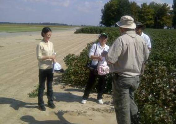 Yang Yang (left) and Lingo Gao from China's Ministry of Agriculture visit a learning center in Scott, Mississippi to see how cotton breeders collect plant variety information.  The U.S. and China are working toward harmonizing their plant variety protection systems.Yang Yang (left) and Lingo Gao from China's Ministry of Agriculture visit a learning center in Scott, Mississippi to see how cotton breeders collect plant variety information.  The U.S. and China are working toward harmonizing their plant variety