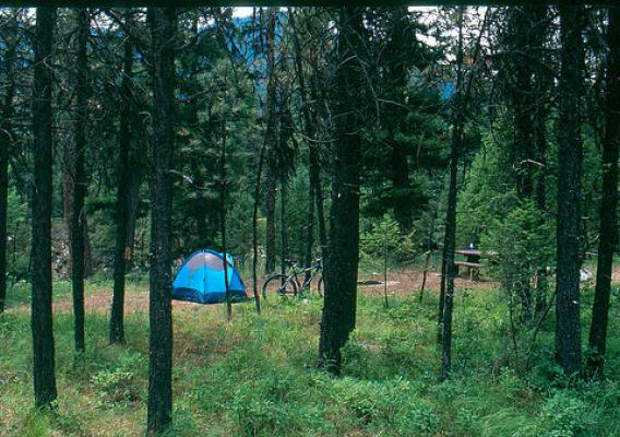 This campground is on the Cascade Ranger District of the Boise National Forest.