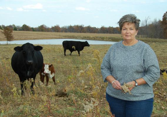 Beginning farmer Ann Whitehead on her 100 acres of agricultural land near Wellsville, Mo. NRCS photo.