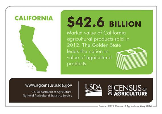 California's moderate climate allow for year round production of many crops, making agriculture in the Golden State important for the U.S. and the world.  Check back next week for another state spotlight from the 2012 Census of Agriculture.