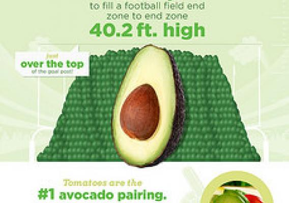 Avocado infographic.