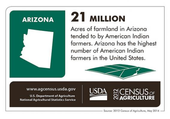 American Indian operators run more than half of all farms in AZ, according to the 2012 Census of Agriculture. Check back next week for another close-up of another state's agriculture scene from the 2012 Census.