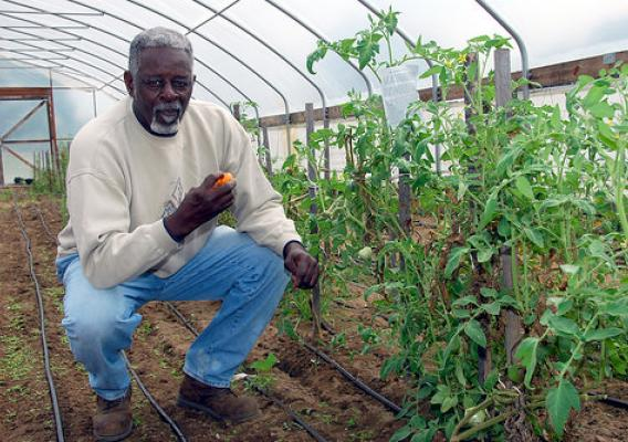 David Backus enjoys a tomato that he grew in his high tunnel. NRCS photo by Charlie Rahm.