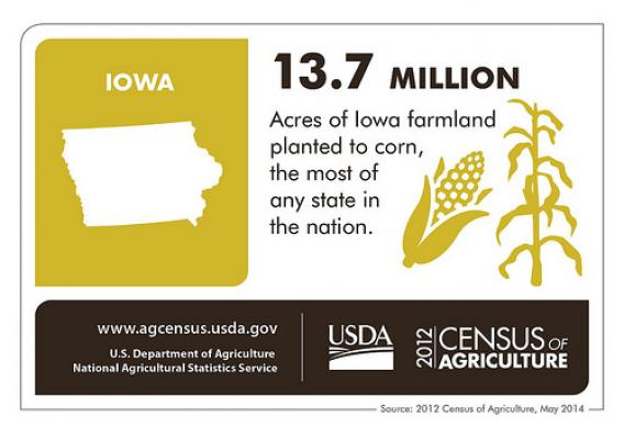Farmers in The Hawkeye State produced more than $17.3 billion worth of crops in 2012 and lead the nation in acres planted to corn. Check back next Thursday as we take a look at another state and the 2012 Census of Agriculture.