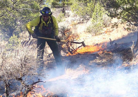 Fire prevention specialist Bob Blasi works to contain a small wildfire on the Tusayan Ranger District. (U.S. Forest Service photo)