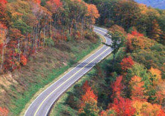 National Scenic Byways offer spectacular views of fall colors, such as Wiseman's View in Linville Gorge on Pisgah National Forest (US Forest Service file photo).