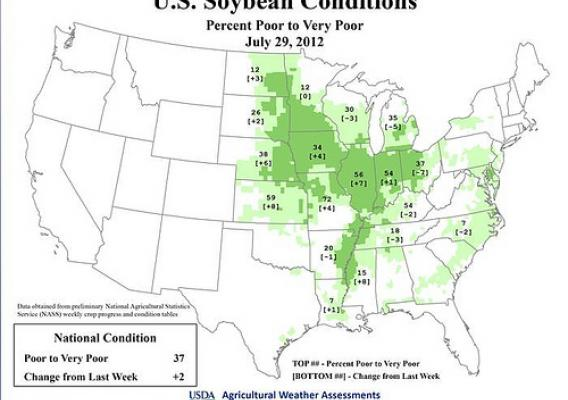 Agricultural Weather Assessment - U.S. Soybean Conditions as of July 29, 2012
