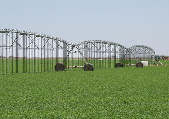 Low Elevation Spray Application and Low Energy Precision Application systems are being used on the Gonzales' alfalfa field in Lovington, NM. This month, USDA celebrates our partnerships to encourage  conservation practices on both public and private lands.