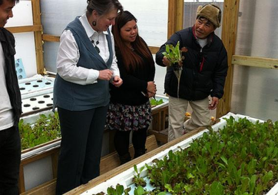 Deputy Secretary Merrigan surveys produce being grown by urban farmers in New Orleans.