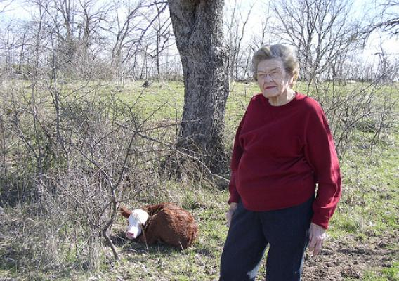 A new calf, new life on the ranch, is reason for Annie Woodson, 100, to step out into the pasture and the Texas sunshine.
