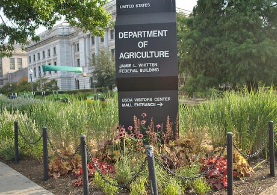 The landscape outside USDA Headquarters has been redesigned with a focus on sustainable landscape practices. The removal of invasive plants and inclusion of a wide variety of native species has created a more beautiful and environmentally friendly space.
