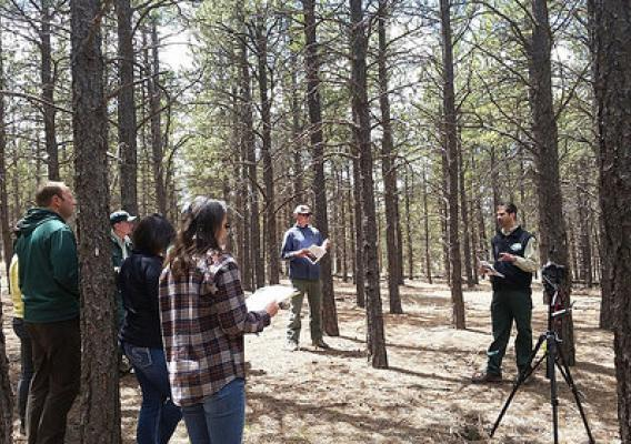 Research Forester Mike Battaglia leading a field tour at the Manitou Experimental Forest