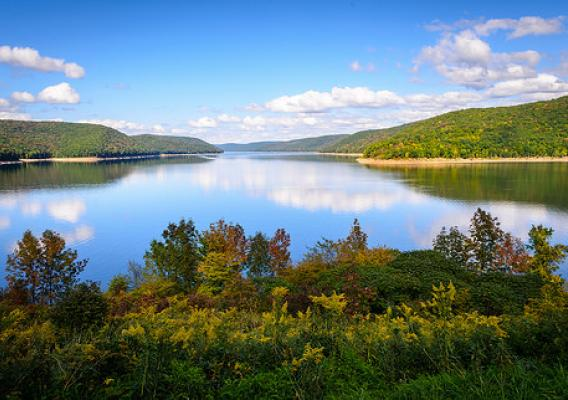 Allegheny National Forest's Allegheny Reservoir