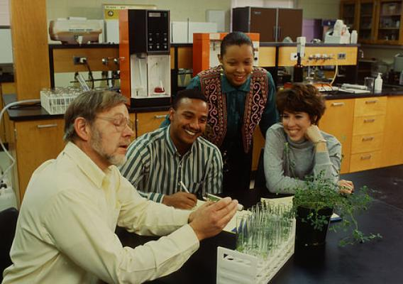 Professor Edward Jones discusses an alfalfa nutrition experiment with Delaware State University students (left to right) Tony Carney, Latisha Corey, and Karen Meyer. (USDA photo by Scott Bauer)