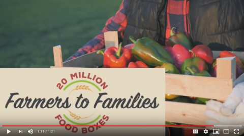 A screenshot of the 20 Million Farmers to Families video