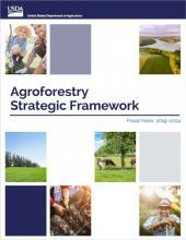 Agroforestry Strategic Framework cover graphic