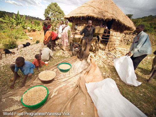 International Food Security: A Look at the Next Decade | USDA